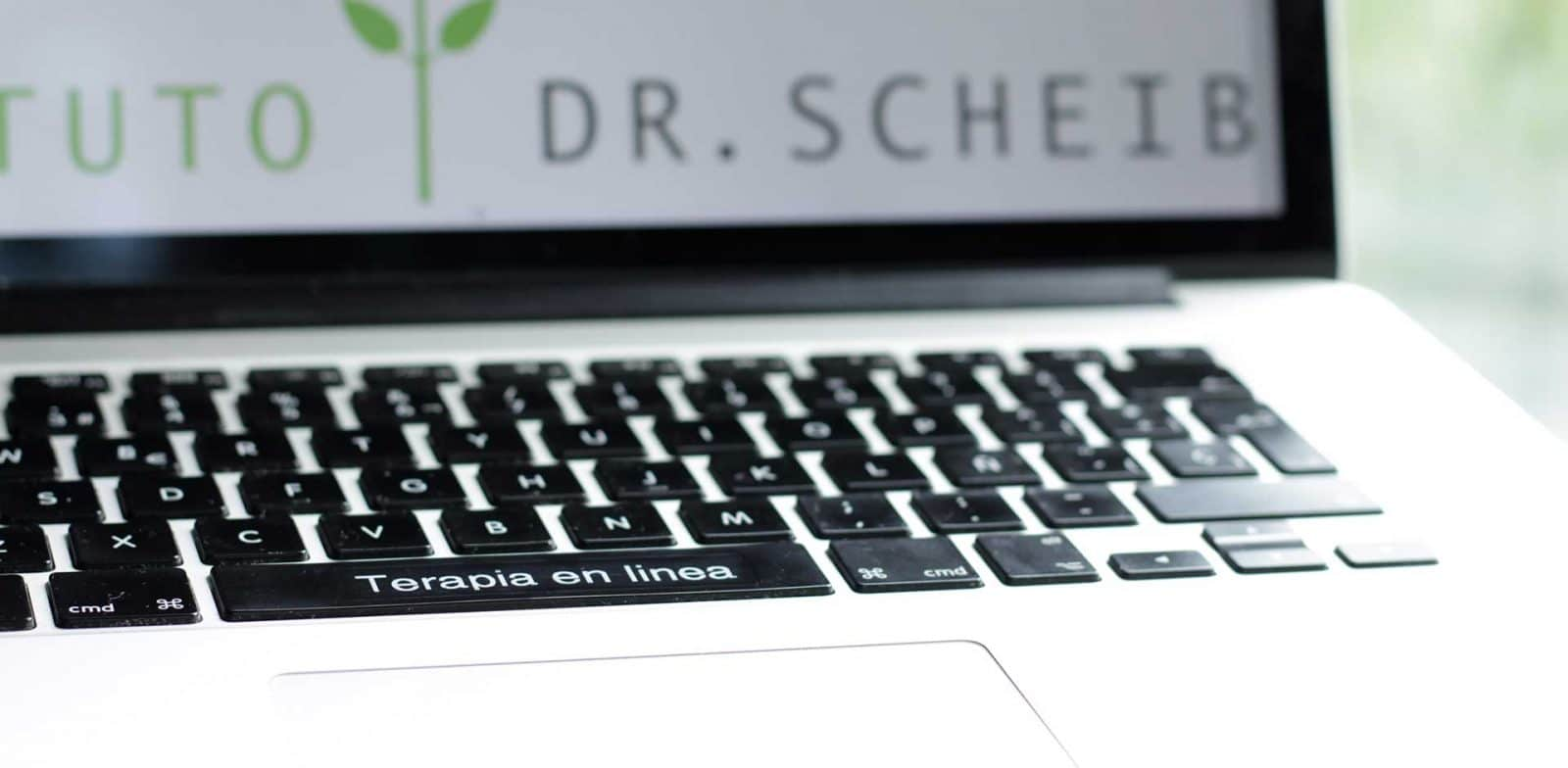 psicoterapia online , terapia en linea